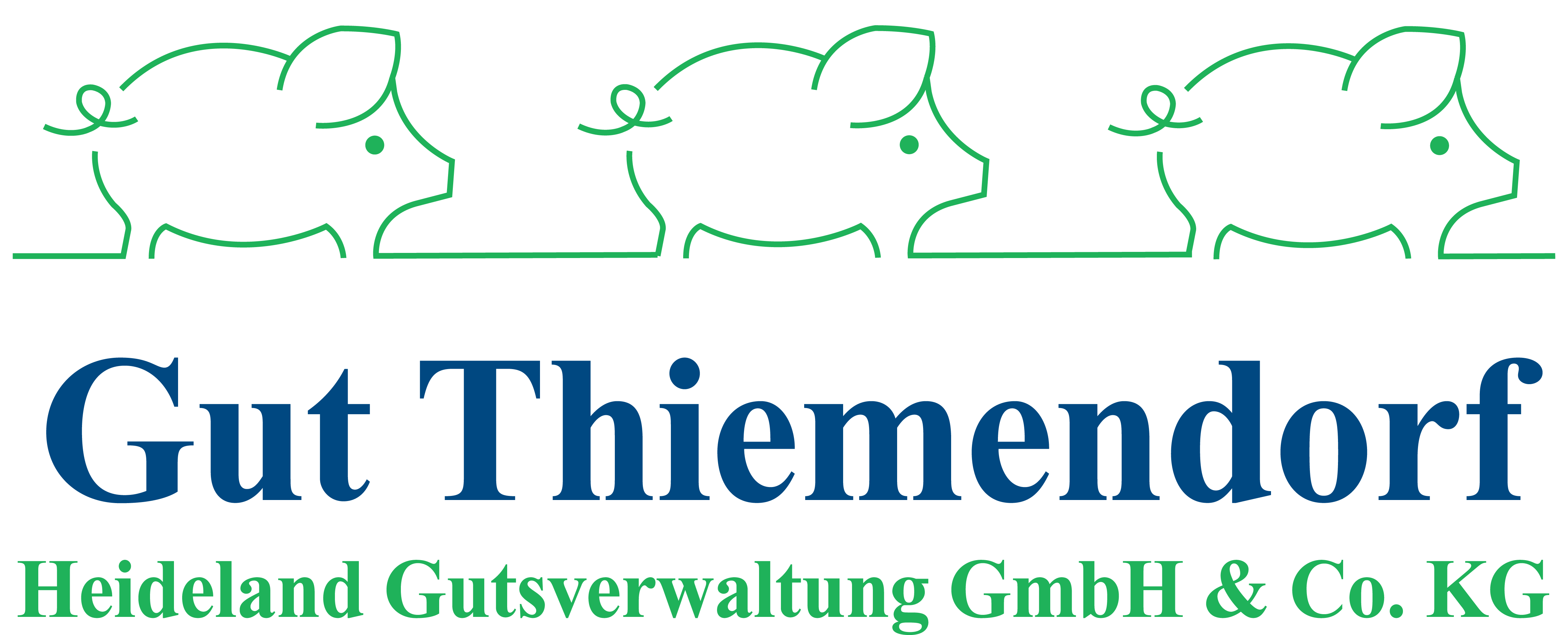 Logo Gut Thiemendorf GmbH & Co. KG